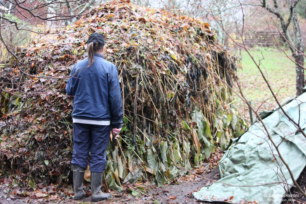 Mihin sijoittaa kompostit?