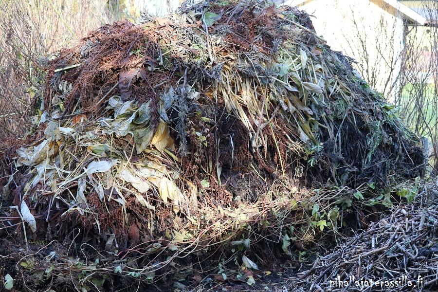 Elävä maaperä pysyy elävä myös niin, että lisää kompostimultaa vuosittain maahan. Kuvassa iso puutarhakompostikasa syksyllä.