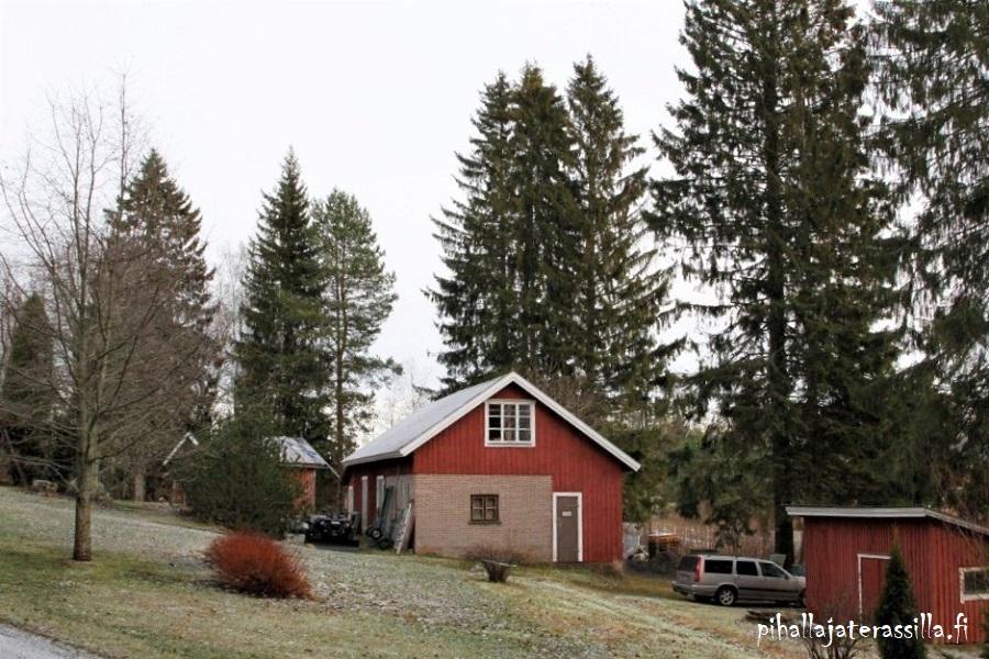 Vanhan pihan esittely ja sen historiaa. Kuvassa näkyy vanha pieni navetta-tallirakennus sekä pari pientä punaista vajaa. Rakennusten takana isot kuuset ja edessä nurmikkoa.