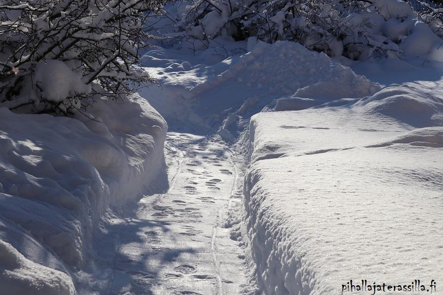 Huomio pihasuunnittelussa -lista on tärkeä ja siinä on aina lumityöt. Kuvassa valkean lumihangen läpi kulkee kolattu polku.