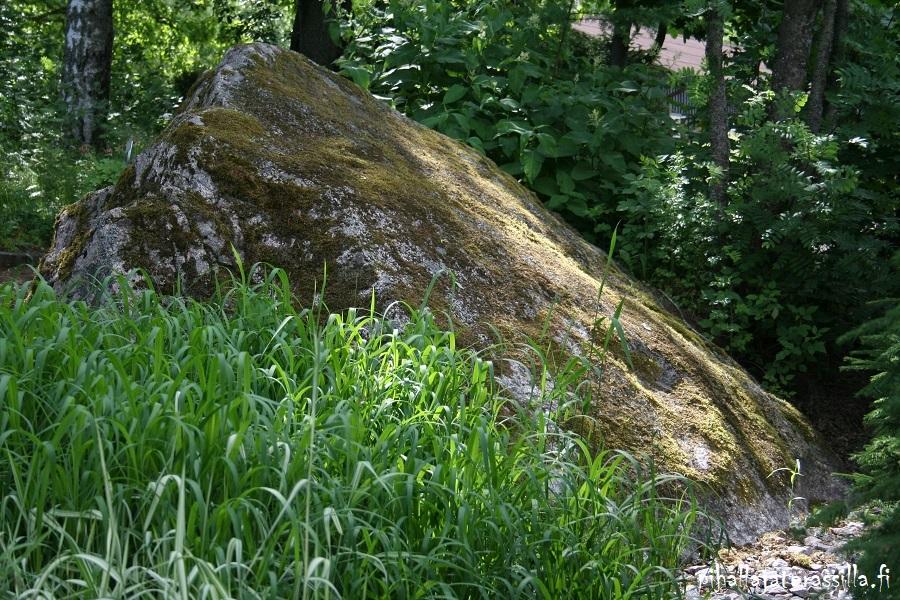 Isot kivet pihalla ja kasvialueilla tuovat ilmettä, kuten tämä iso maakivi metsän reunassa.