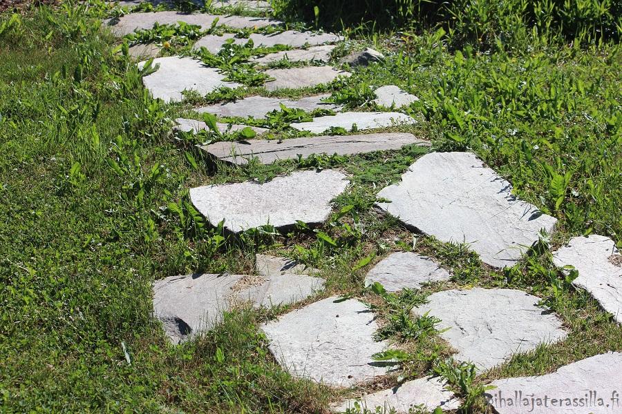 Liuskekivipolku nurmikolla on perustettu kuvassa huonosti. Eli osa kivistä on noussut nurmikon pintaa korkeammalle ja siksi ruohonleikkaaminen on hankalaa.