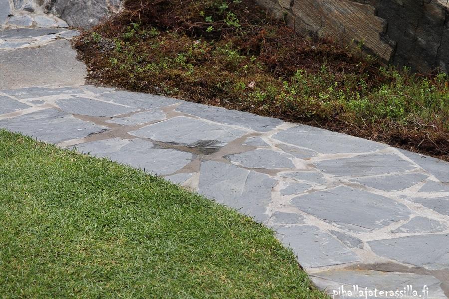 Betonikivi, liuskekivi vai kivituhka pihan pinnoitteena? Kuvassa on liuskekivestä tehdyt polku, jossa saumat ovat sauma-ainetta.