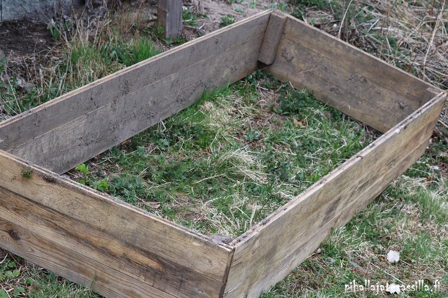 Viljelylaatikon mullan kunnostus. Kuvassa vanhan viljelylaatikon lautakehys nurmikon päälle laitettuna.